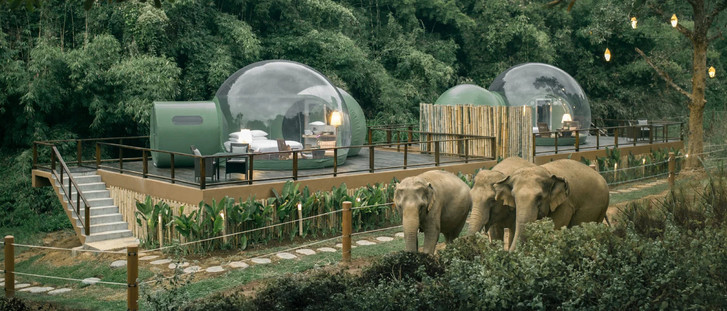 """Отель-""""пузырь"""" в джунглях Таиланда (фото 0)"""