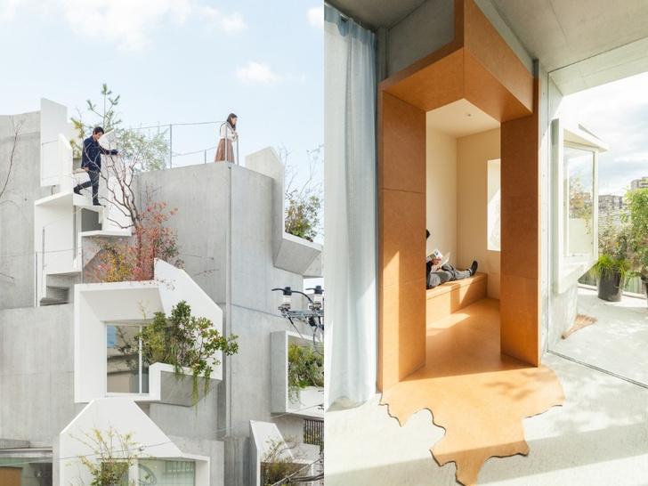 25 домов-гибридов со всего мира (фото 24)