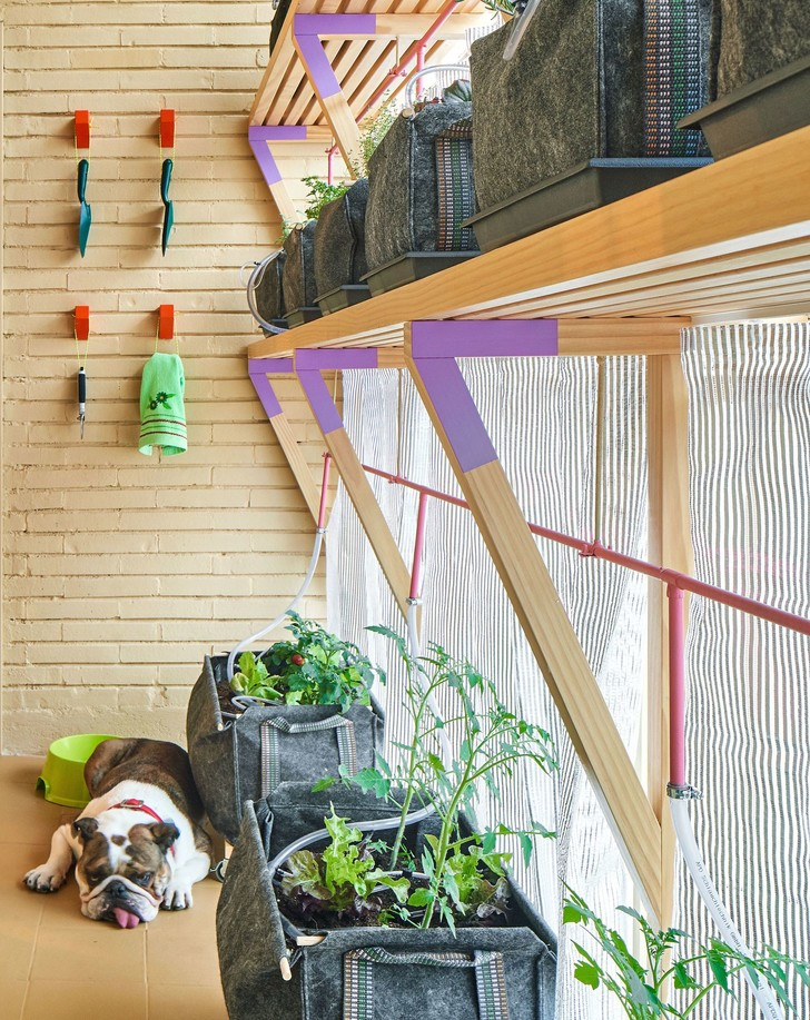 Квартира 46 м²для молодого врача и его бульдога в Мадриде (фото 7)