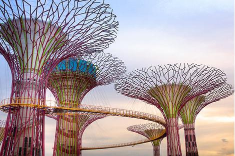 10 мест, которые нужно посетить в Сингапуре | галерея [1] фото [4]