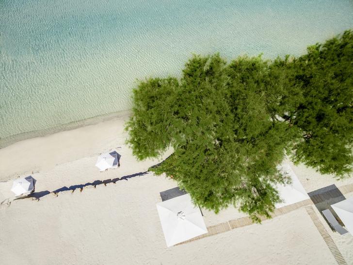 Естественная наука: экокурорт Sani Resort (фото 2)