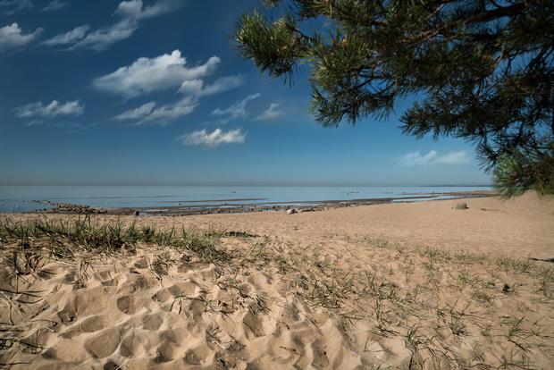 Век живи: курорт на Финском заливе, где вас научат жить до 120 лет (фото 6)