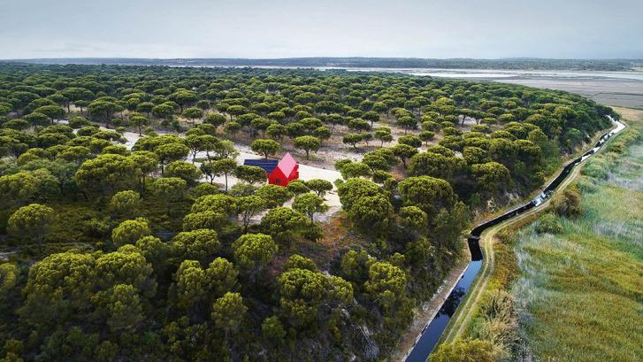Total red: яркий дом в Португалии (фото 2)