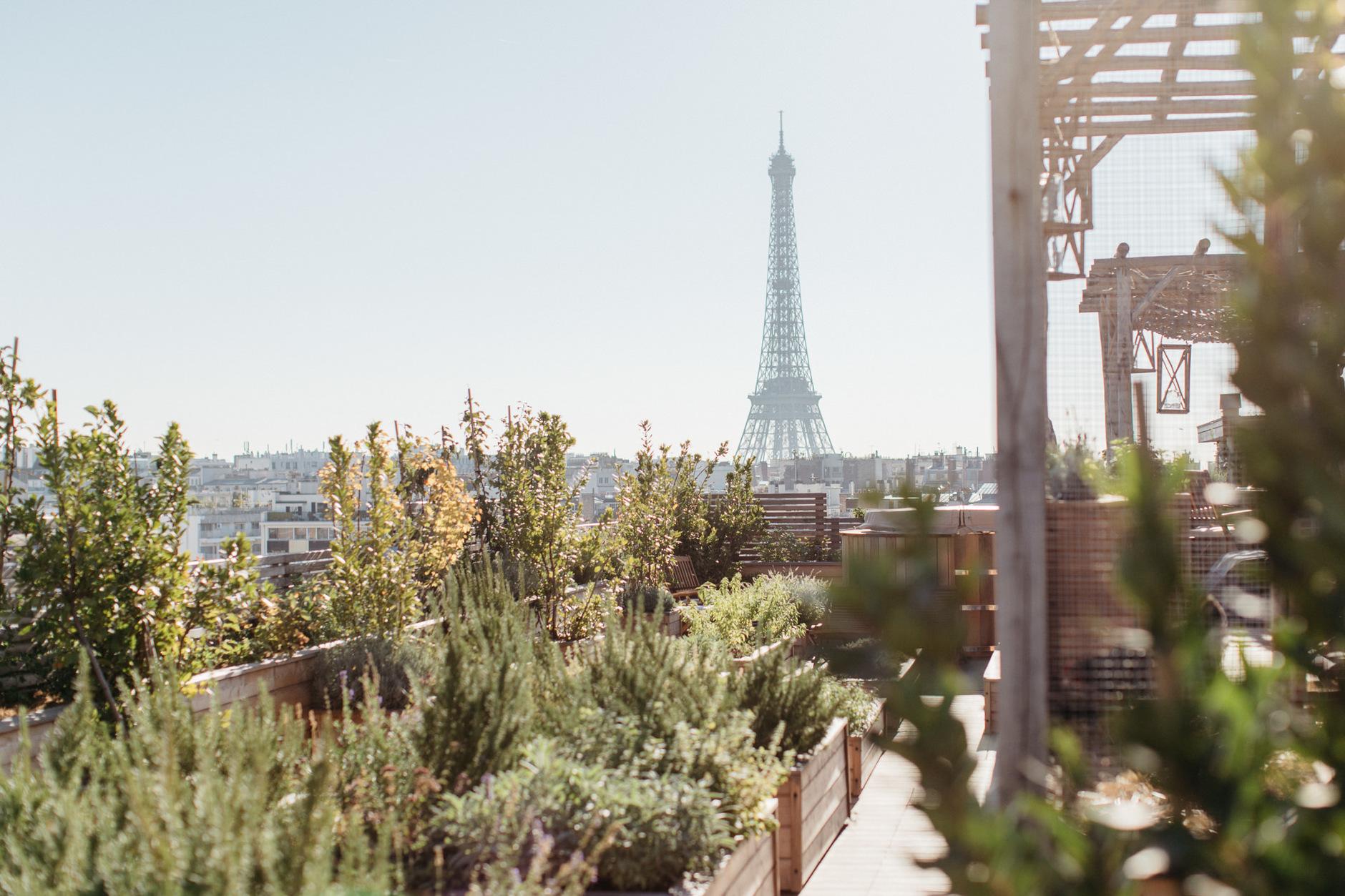 Brach: новый отель Филиппа Старка с видом на Эйфелеву башню (галерея 5, фото 0)