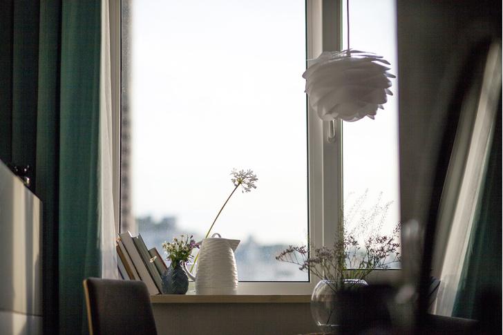 33 квадратных метра для счастья: маленькая квартира в Петербурге (фото 10)