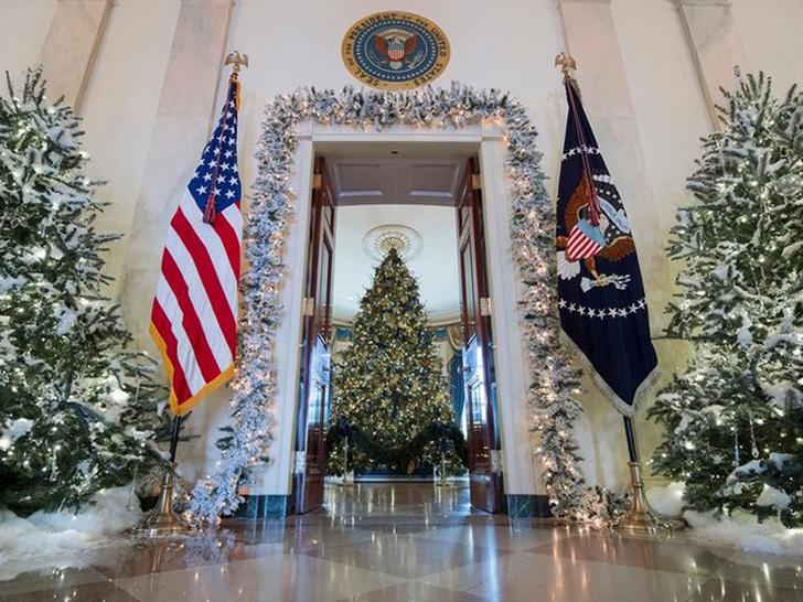 Мелания Трамп украсила Белый Дом к Рождеству фото [11]