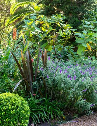 Дом и сад Бронте в центре Сиднея (фото 9.1)