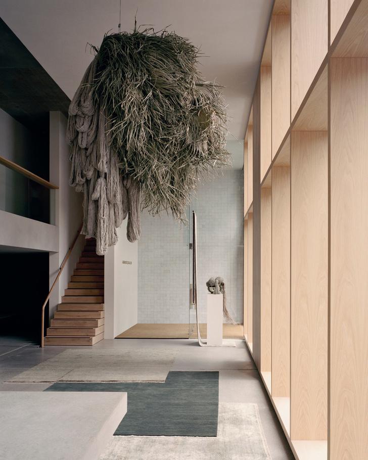 Бетон, ковры и кактусы: новый шоурум Armadillo & Co в Сиднее (фото 7)