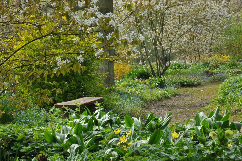 Модные сады в стиле mid-century modern (галерея 14, фото 4)