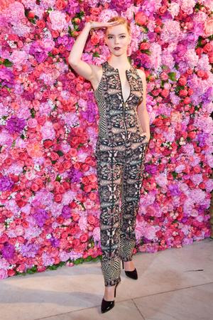 Звезды на показе Schiaparelli Couture в Париже (фото 5.1)