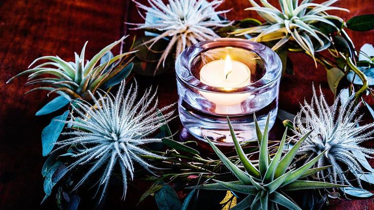 Цветочный декор на Рождество: 10 простых советов (фото 14)
