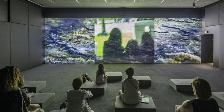 Онлайн-программа к выставке Cartier Trees (фото 8)
