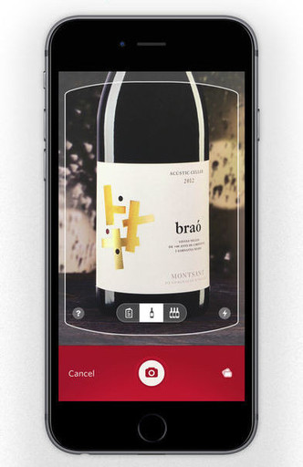 In vino veritas: 7 лайфхаков для любителей вина фото [6]