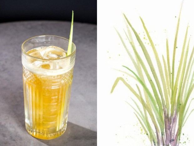 7 рецептов домашнего лимонада (фото 13)