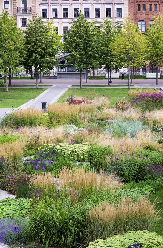 Многая лета: сад трав в Санкт-Петербуре по проекту бюро «Мох» (фото 18)