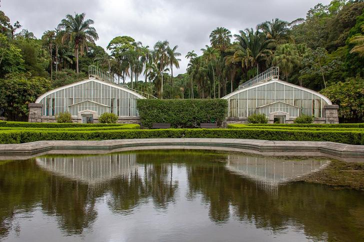 #Лучшедома: 10 виртуальных туров по ботаническим садам (фото 21)