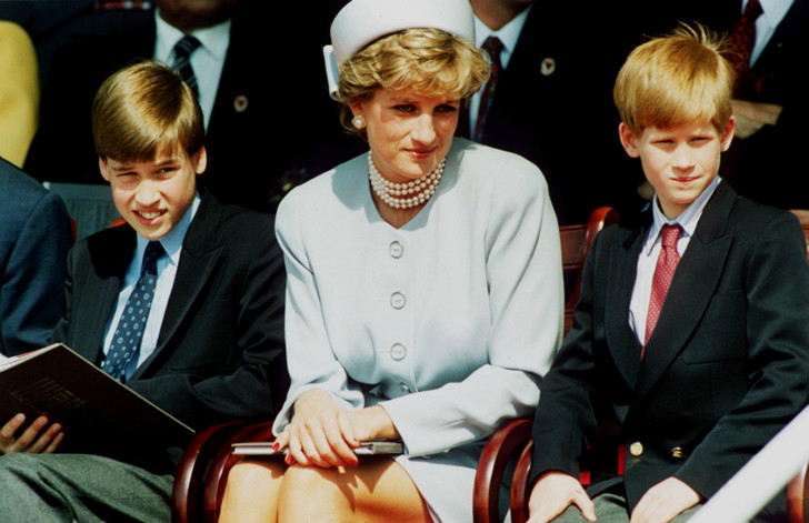 Принцесса Диана, принцы Гарри и Уильям, 1995 год