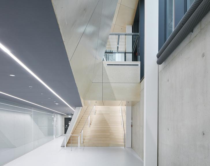 Новое здание штаб-квартиры Swarovski от студии Snøhetta (фото 14)