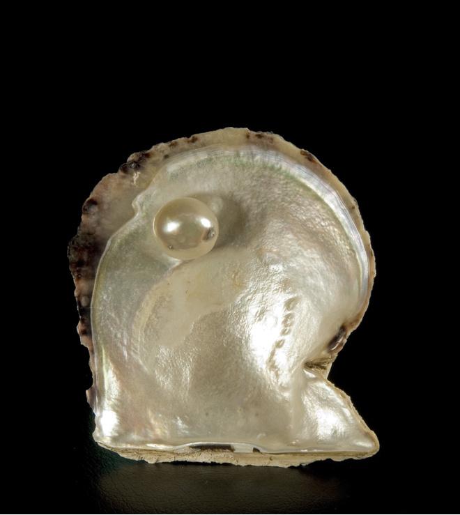 Море внутри: легендарная коллекция катарского жемчуга (фото 4)