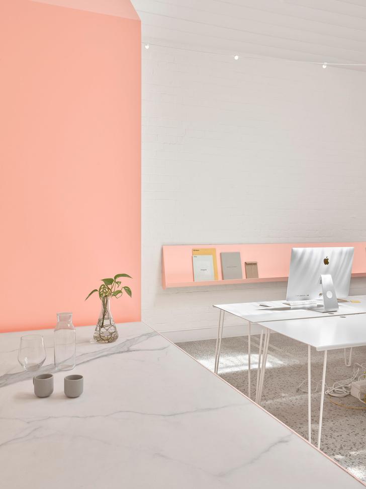 Розовые грезы: яркий офис в Мельбурне (фото 0)