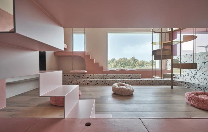 Розовый дом с комнатой для кошек на Тайване (фото 3)