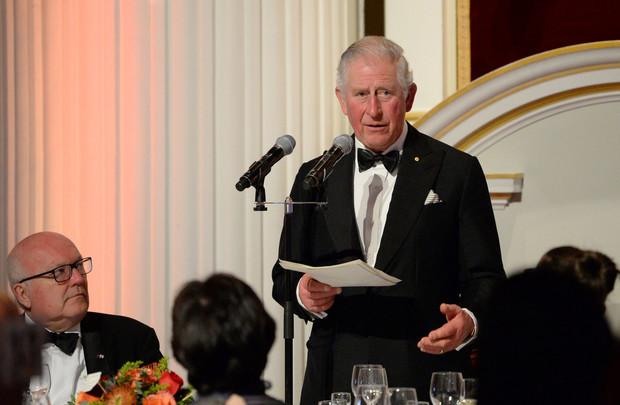 Полон сил и здоров: принц Чарльз выздоровел после заражения  коронавируса (фото 3)