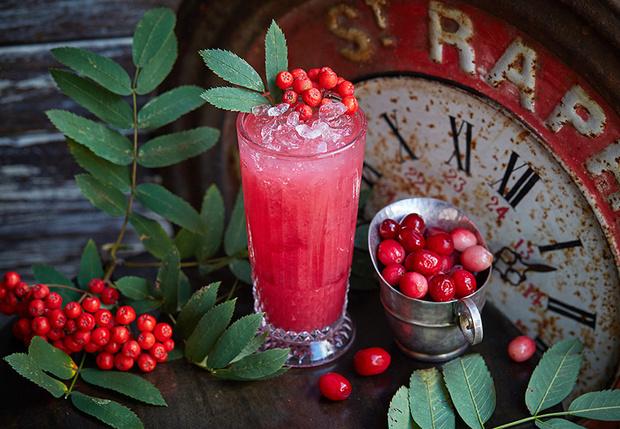 Rowan lemonade/ рябиновый лимонад фото