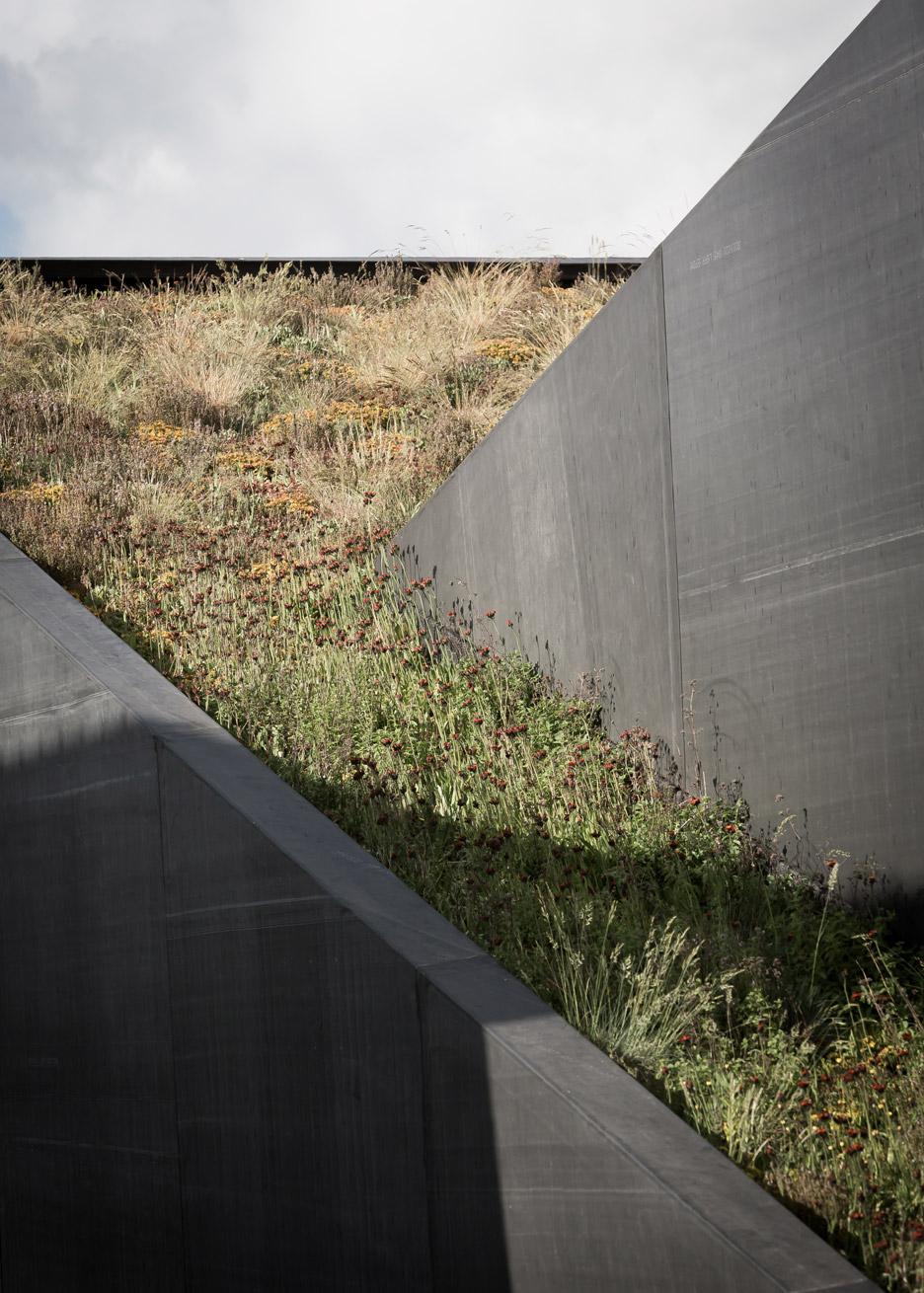 Пятый фасад: зеленые крыши (галерея 23, фото 2)