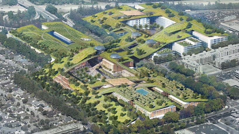 Пятый фасад: зеленые крыши (галерея 35, фото 4)
