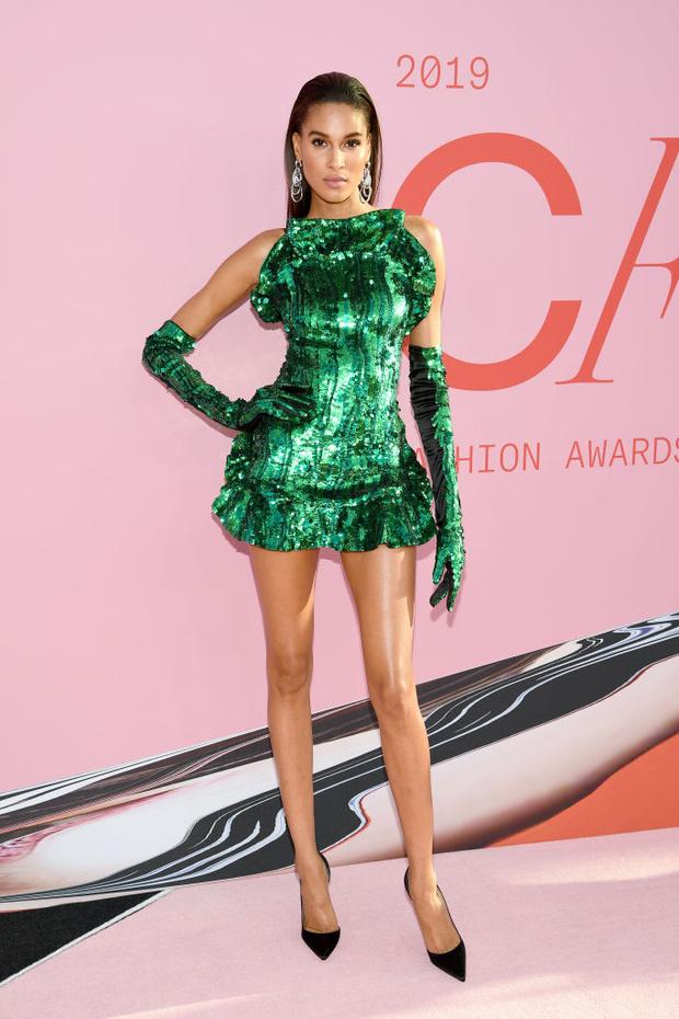 Сенсационно: 23 сексуальные супермодели на премии CFDA Fashion Awards (фото 21)