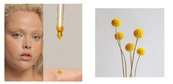 Ускользающая красота: как бьюти-бренды меняют упаковку ради экологии (фото 11)