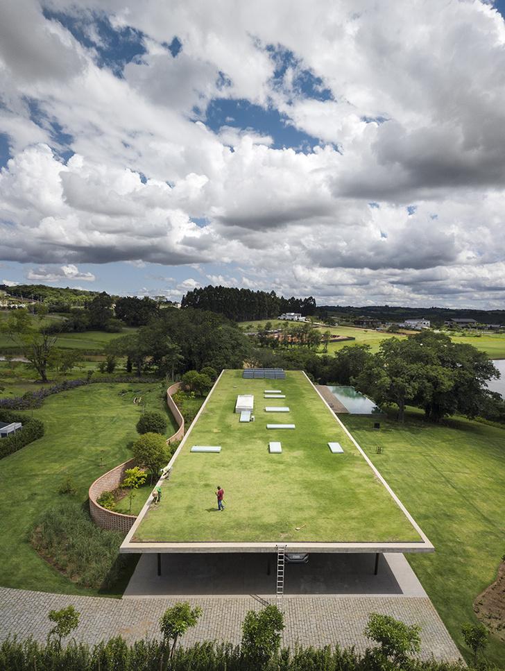 Пятый фасад: зеленые крыши (фото 1)