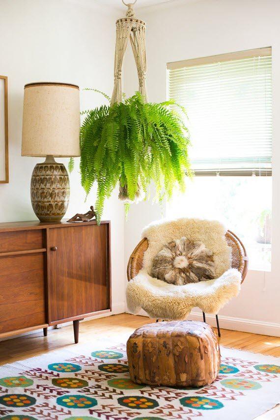 Самые модные комнатные растения 2019 года (фото 7)