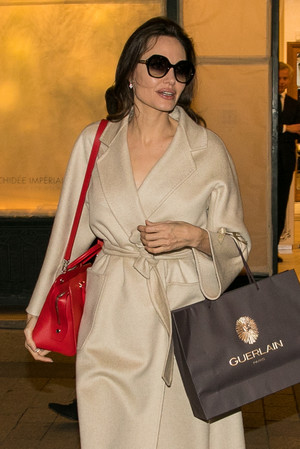 Фото дня: Анджелина Джоли в Париже (фото 2)