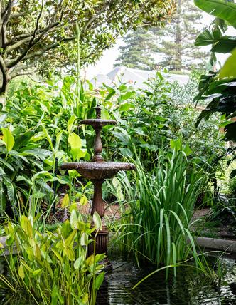 Дом и сад Бронте в центре Сиднея (фото 9.2)