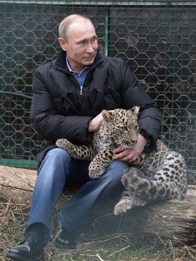 Владимиру Путину - 66 лет: стиль президента в лучших фотографиях (фото 11)
