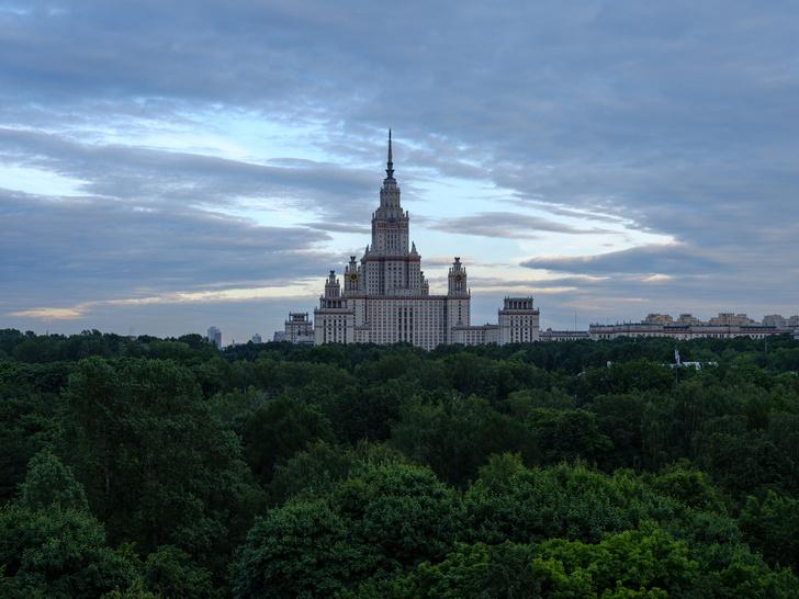 Квартира 120 м² с видом на МГУ (фото 13)