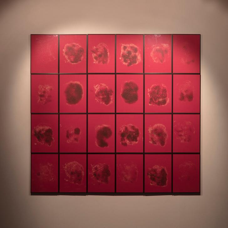 Выставка «Анна Франк. Дневники Холокоста» в Еврейском музее (фото 7)