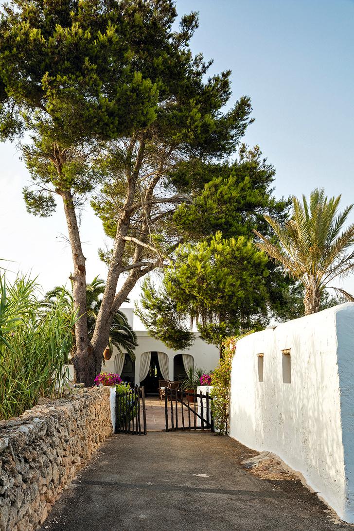 Остров сокровищ: дом Патриции Уркиолы на Ибице (фото 7)