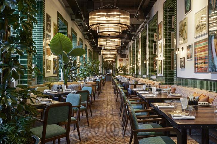 Ресторан Сыроварня в Баку (фото 0)