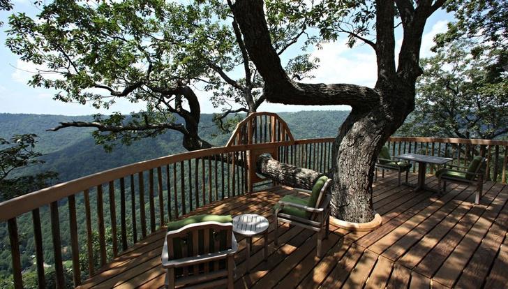 Экотренд: отели на деревьях (фото 25)