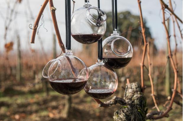 Арт-проект Матали Крассе для выставки в музее вина в Бордо (фото 0)