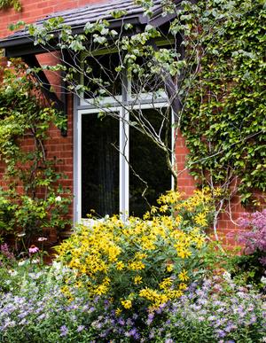 Современный дом и сад в пригороде Мельбурна (фото 6.1)