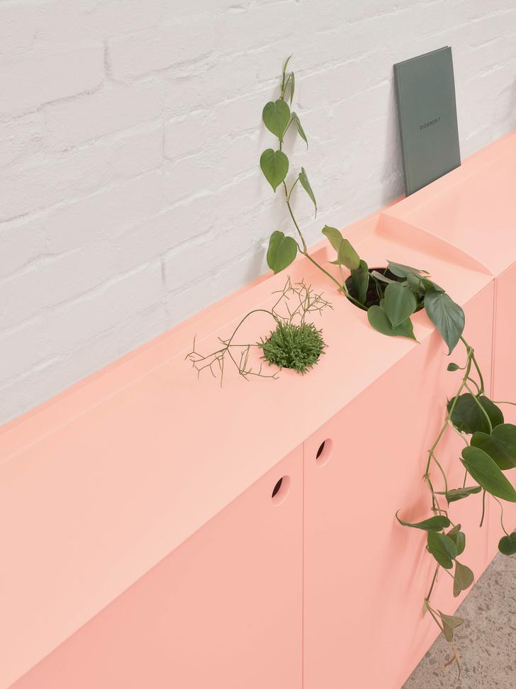 Розовые грезы: яркий офис в Мельбурне (фото 5)