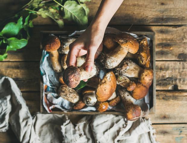 Ароматная осень: 5 самых вкусных рецептов с грибами (фото 1)