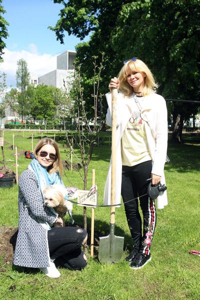 Посадка вишневых деревьев в рамках фестиваля «Черешневый лес» | галерея [2] фото [4]