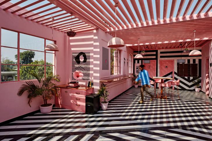 The Pink Zebra: ресторан в эстетике Уэса Андерсона (фото 2)