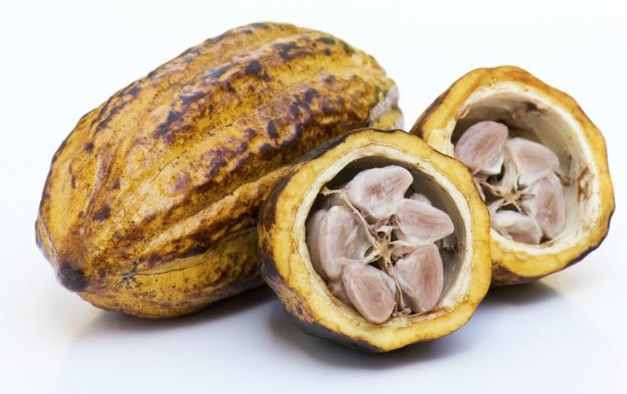 сырые какао-бобы диета