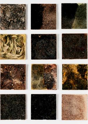 Живая материя: революционный дизайн из мира науки (фото 12.2)