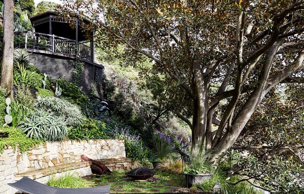 Эклектичный сад на берегу реки в Австралии (фото 9)